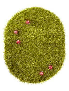 Tapis herbe chambre fille theme coccifleurs