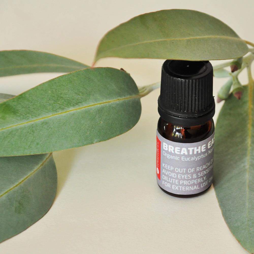 Huile essentielle pour diffuseur d'arôme Eucalyptus