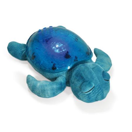 Tranquil Turtle CLOUD B 1