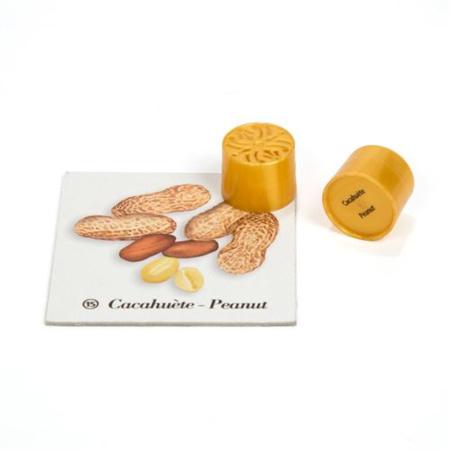 Les boîtes à odeurs Montessori NATURE & DECOUVERTES 3