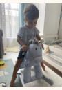 avis Pixie et Fluff cheval à bascule Little Bird Told Me  par Janiella