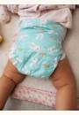 avis Couches Baby & Eco-friendly par Anne