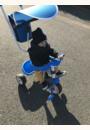avis Tricycle Baby Balade 2 par Maryne
