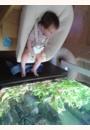 avis Newborn set Tripp Trapp pour nouveau-né par flora