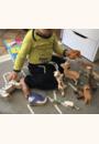 avis Animal en bois par Mélissa