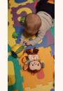 avis P'tit singe d'activités Noé  par Lucie