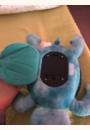 avis Tranquil Turtle par Amandine