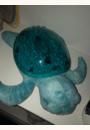 avis Tranquil Turtle par Melissa