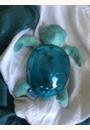avis Tranquil Turtle par Sharley