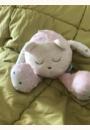 avis Mascotte qui dort avec capteur de sommeil par karine