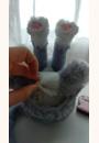 avis Bootsie Le Chat - Fur Real Friends par Sarah