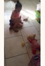 avis Little Love - Bébé Apprend à Marcher par Stéphanie