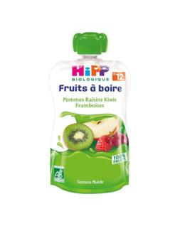 Gourde Pommes Raisins Kiwis Framboises - 1 gourde x 120ml - dès 12 mois