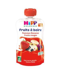 Gourde Pommes Bananes Fruits Rouges - 1 gourde x 120ml - dès 12 mois