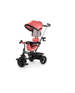 Tricycle 2 en 1 Baby Tiger Fly